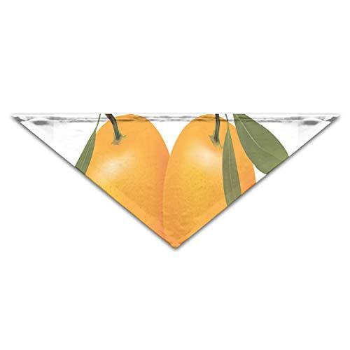 (HJudge Dog Bandana Best Orange Dog Scarf Designer Pet Triangle)