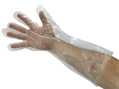 KingSeal Poly Elbow Length Disposable Gloves, 17