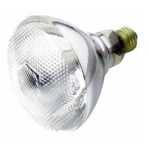 12 Pack Havells 75br38 Fl Rs 75 Watt Br38 Outdoor Incandescent Flood Light Bulb Rough