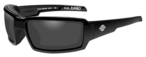 Harley-Davidson Mens Jumbo Sunglasses, Smoke Gray Lens/Black Frame HDJUM01