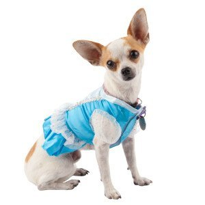 Disney Princess Dog Costume Dress Small Blue for $<!--$44.99-->