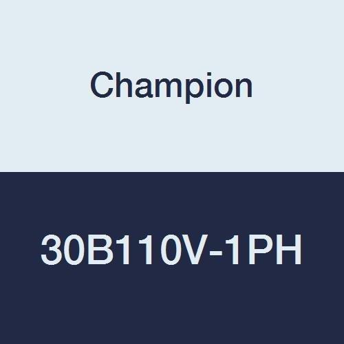 Champion 30B110V-1PH Commandair Series 1 hp Splash Lubric...