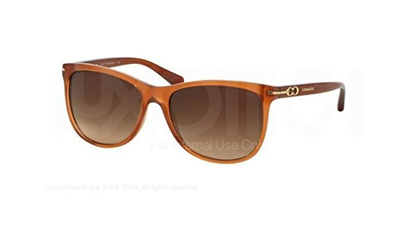 abf0ebdbc7 Coach L088 Blakely Sunglasses HC8117 525113 Milky Saddle Brown Gradient 55  16 135  Amazon.ca  Clothing   Accessories
