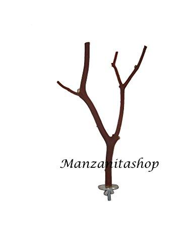 Medium Manzanita Bird Perch (9