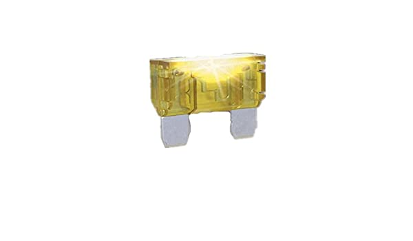 Littelfuse 02400104P 1A Mini Diode Automotive Fuse-4Pack