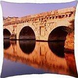 mirage bridge - Throw Pillow Cover Case (18