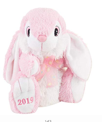 Way to Celebrate Hoppy Hopster Easter Bunny Plush 2019 ()