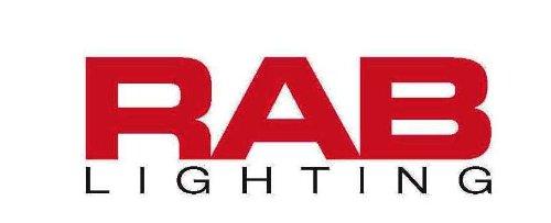 RAB Lighting SPOST500/180 Smart Post Sensor 180 Degrees Detection Pattern 500W Power  sc 1 st  Amazon.com & RAB Lighting SPOST500/180 Smart Post Sensor 180 Degrees Detection ...