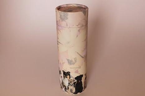 Kronos – Urna Biodegradable con disperseur de cenizas con forma de ...