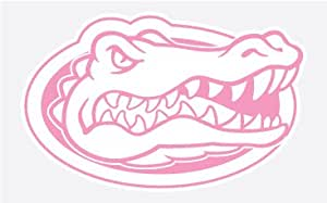 Amazon Com Florida Gators Gator Head In Pink 4 Quot Vinyl