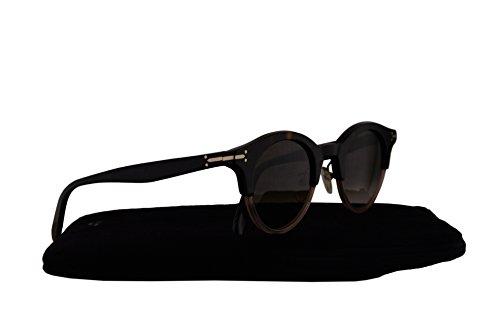 Celine CL41395/S Sunglasses Havana Crystal Grey w/Brown Gradient Lens 45mm T7BZ3 CL - Celine Eyeglasses 2016