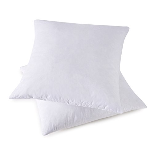 Compare price to 12 x 24 pillow insert down TragerLaw.biz