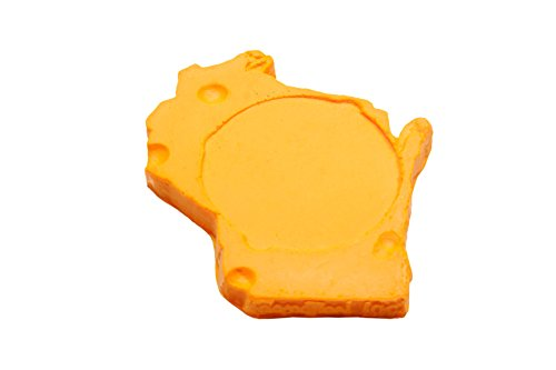 (CHEESEHEAD WISCONSIN COASTER SET OF 4)
