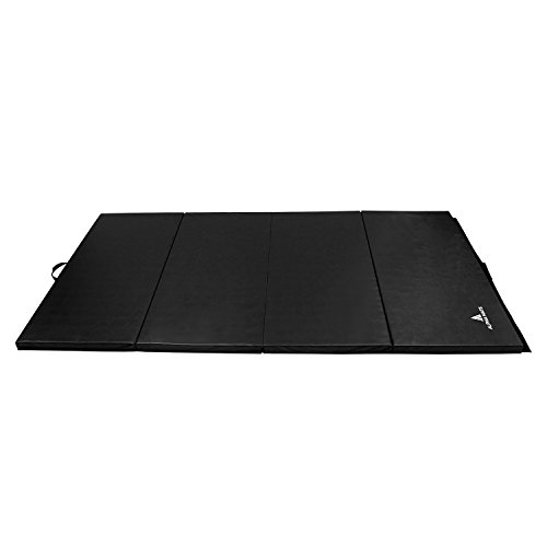 Alpha Mats Folding Gymnastics And Exercise Mat Pu