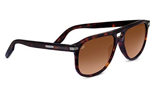 778e59e257 Serengeti 8327-Carlo Large Carlo Large Glasses