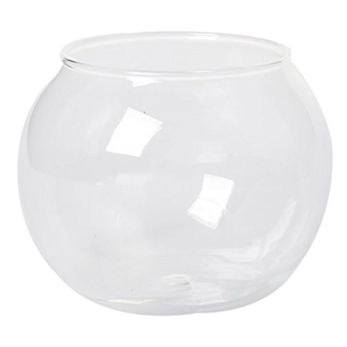 Ronda Recipiente de Vidrio Transparente de Cristal Florero Esfera Clara Cántaro Pecera