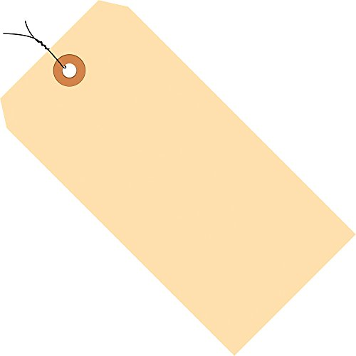 (Aviditi G10083 13 Point Cardstock Pre Wired Shipping Tag, 6-1/4
