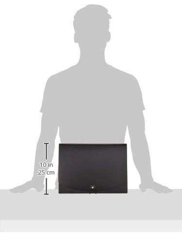 AmazonBasics Expanding File, Letter Size - Black