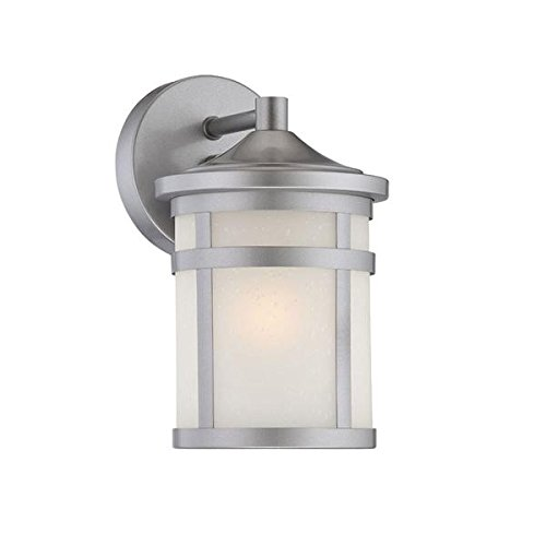 Acclaim 4714BS Visage Collection 1-Light Wall Mount Outdoor Light Fixture, Brushed Silver - Architectural Silver Outdoor Wall