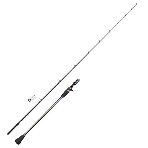 Rosewood Japan Full Fuji Parts Light Jigging Rod 1.95m 6'3'' Slow Pitch Jigging Casting Rods Jig Rod Ocean Fishing Rod