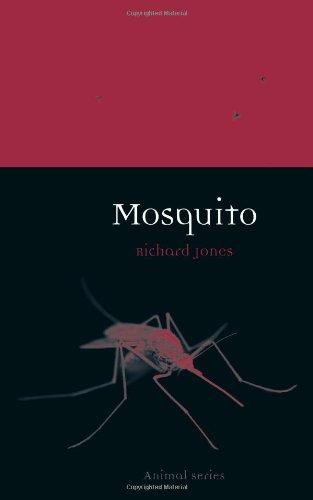 Mosquito (Animal)