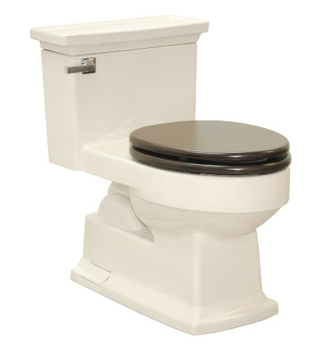 TOTO MS934304SF#12 Lloyd Elongated One Piece Toilet with Maple SoftClose Seat, Sedona Beige