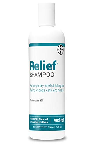 (Bayer Relief Shampoo, temporary relief of itching and flaking, moisturizer for dry skin and coat, for dogs, cats and horses, 12 oz)