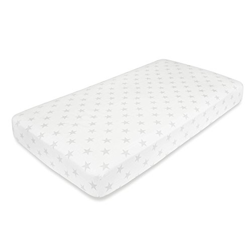 aden anais Premium Flannel Sheet product image
