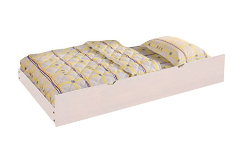 - HOMES: Inside + Out IDF-TR452-WH Carlita Trundle, Twin, White
