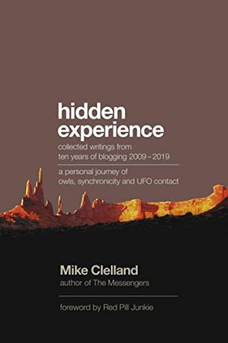 Hidden Experience: Ten years of blogging 2009-2019 - a personal journey of owls, synchronicity and UFO contact (The Messengers Series)