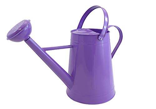 Tierra Garden 36-5081VA Traditional Metal Watering Can, 2.1-Gallon, Purple