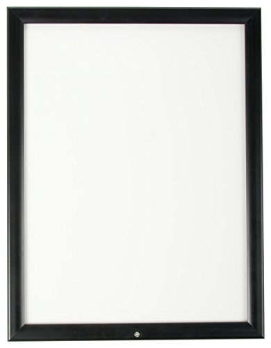 (Displays2go Outdoor Snap Frame for 18x24-Inch Posters or Advertisements, Locking Enclosure, Rust/Weather Proof, Aluminum)