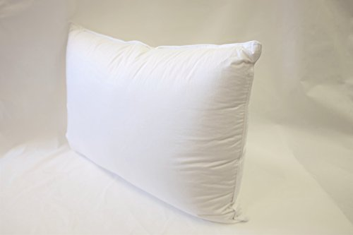 - East Coast Bedding European 800 Fill Power White Goose Down Pillow. (Queen)