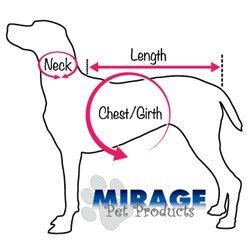 Mirage Pet Products Sprinkles Ice Ice Ice Cream Dog Collar con cristalli arancioni 3159c5