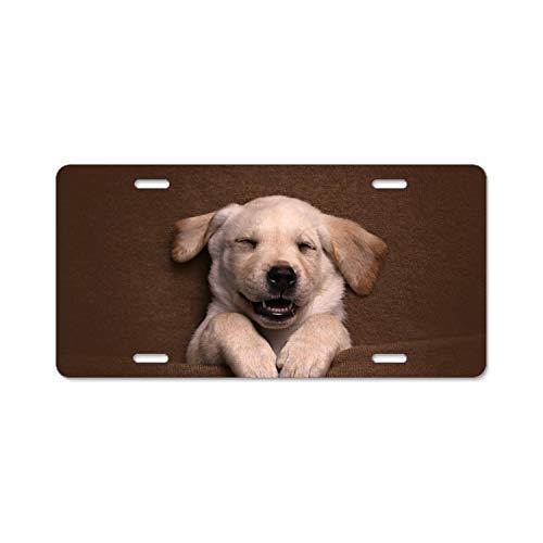 - Animal Golden Retriever Dog Baby Sleeping Puppy Car Vehicle License Plate Metal Tin Sign Plaque