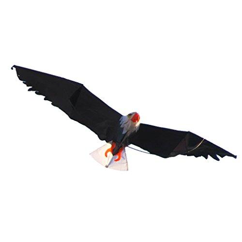 Eagle Windsock (Baoblaze Huge Eagle Shape Kites Single Line Kite Windsock Outdoor Game Kids Toy)