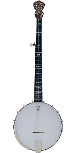 Deering Artisan Goodtime Special 5-String Resonator Banjo Natural by Deering
