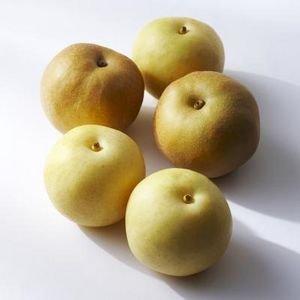 Organic Heirloom 100 Seeds Chinese Pear Pyrus Ussuriensis Ussurian Pear Hardy Fruit Tree Edible Fruit Seeds T023