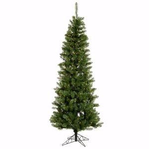 Vickerman Salem Pencil Pine Green Christmas Tree with 250 Clear Dura-Lit, 6.5-Feet