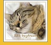 ''Nature Nurtures'' Story Book & Puppet Ensemble- ZZ's Daydream - for Memory Care Activities and Caregivers by Memorable Pets