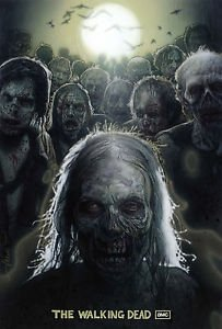The Walking Dead Television Series  Poster 24x36