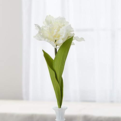 Tulip Parrot Stem (Cream Poly Silk Parrot Tulip Stems | 2 Stems | for Indoor Decor)