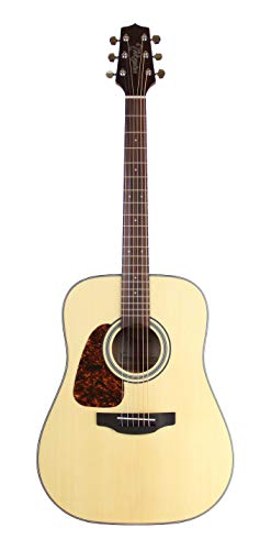 (Takamine GD10LHNS Dreadnought Spruce Top, Natural - Left Handed)