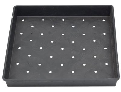 17'' x 17'' Wheatgrass / Sprout Growing Tray with Drainage Holes by Got Sprouts?