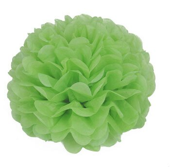 Somnr® Pack of 10 Grass Green Wedding Decorative Props Tissue Paper Pompoms Pom Poms Balls Wedding Party Home Decoration 10