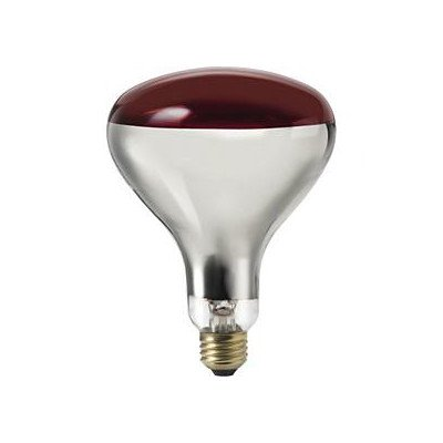 Infrared Light Bulb - Philips 415836 Heat Lamp 250-Watt R40 Flood Light Bulb 4 Pack