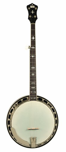- Recording King RK-R36-BR Madison Tone Ring Banjo, Mahogany Resonator