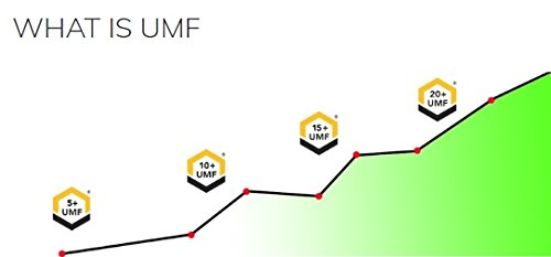 Manuka Honey 500g UMF 20+ (MGO ≥ 829) Pure New Zealand Honey 1.1 lb by API Health (Image #3)