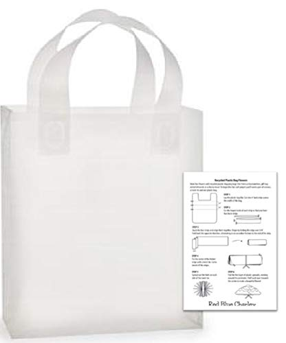 Frosted Plastic Bag Clear - 24 Plastic Shopping Bags Clear Frosted Gift Handle Bag (Debbie - 10x5x13)