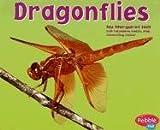 Dragonflies, Margaret C. Hall, 0736861254